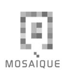 Logo van Mosaique